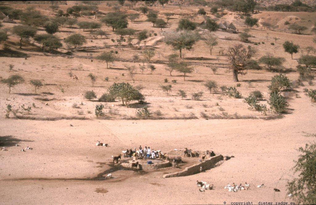 396 Wasserstelle im Wadi