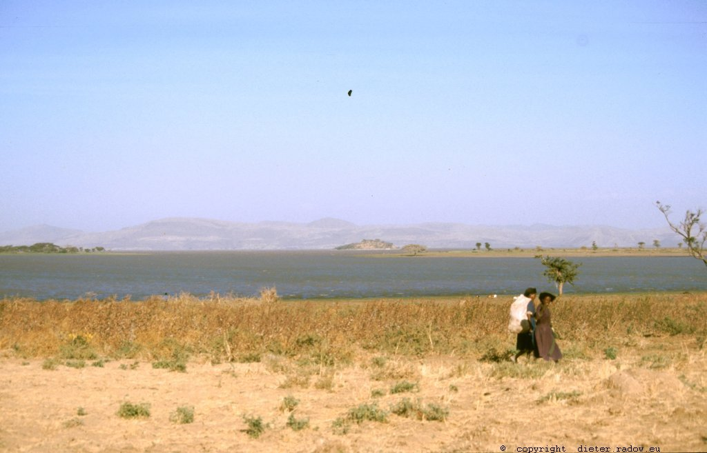 AES 339 an den südlichen Seen des Rift-Valleys