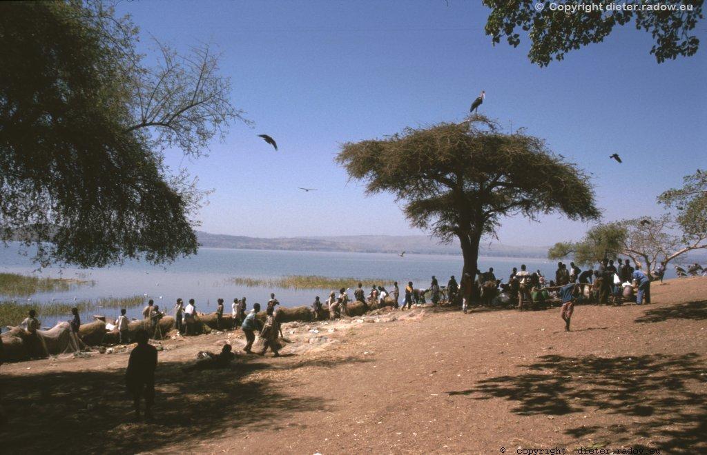 AES 387 Äthiopien südliche Seen119