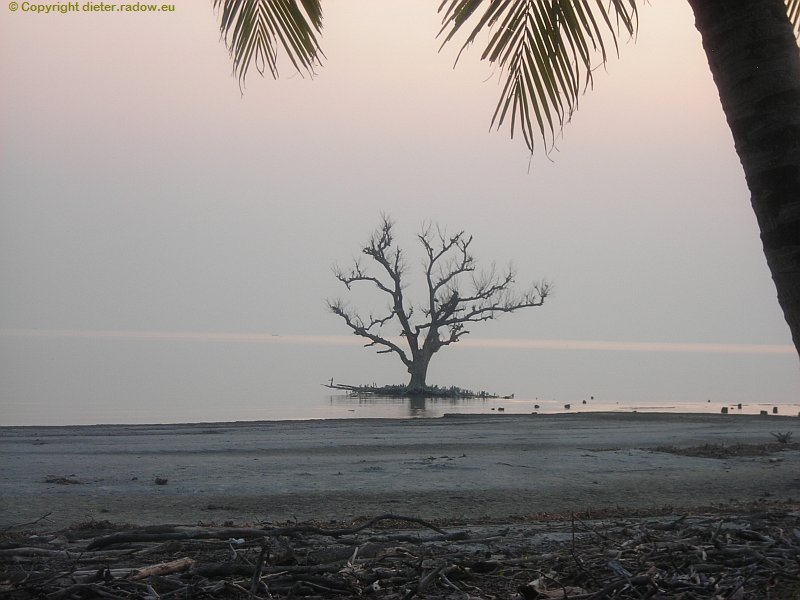 Bangladesch Das Ganges-Delta Sundarban endet am Golf von Bengalen 5
