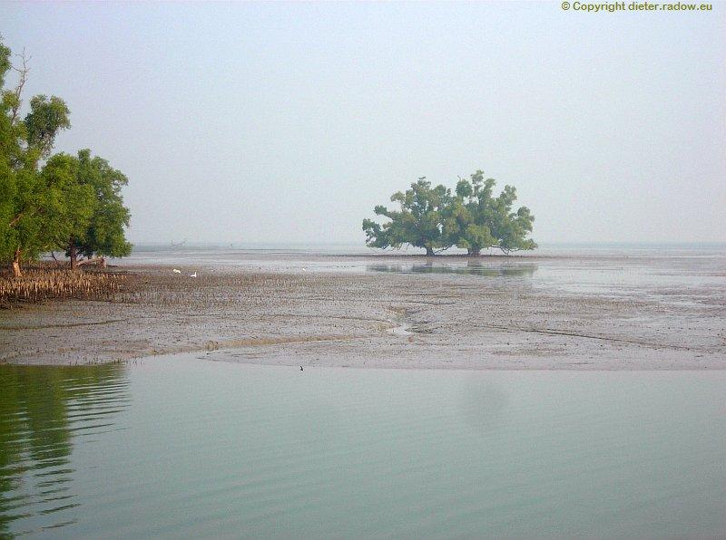 Bangladesch1 Das Ganges-Delta Sundarban endet hier am Golf von Bengalen 9