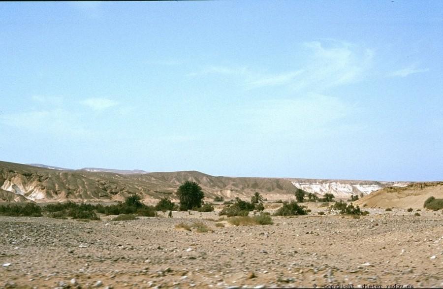 Ägypten  Sinai Wadi Feran