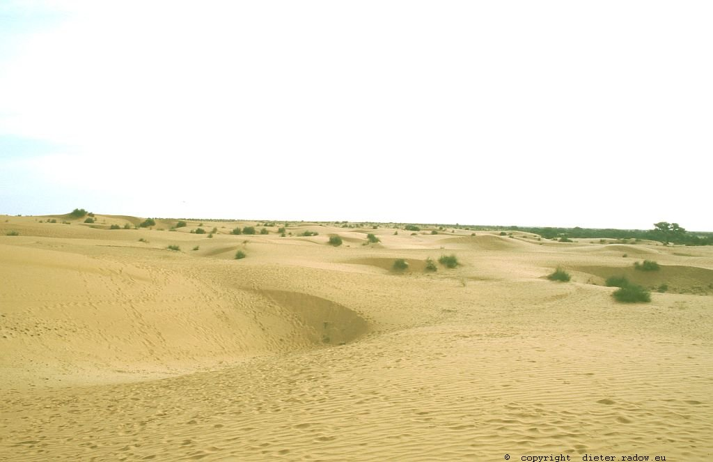 137 Burkina Faso Gorom Gorom Sanddünenlandschaft im nördlichen Sahel
