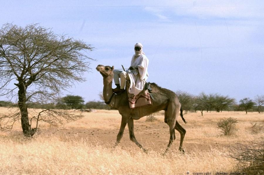 140 Burkina Faso Gorom Gorom Tuaregg-Geisterreiter83