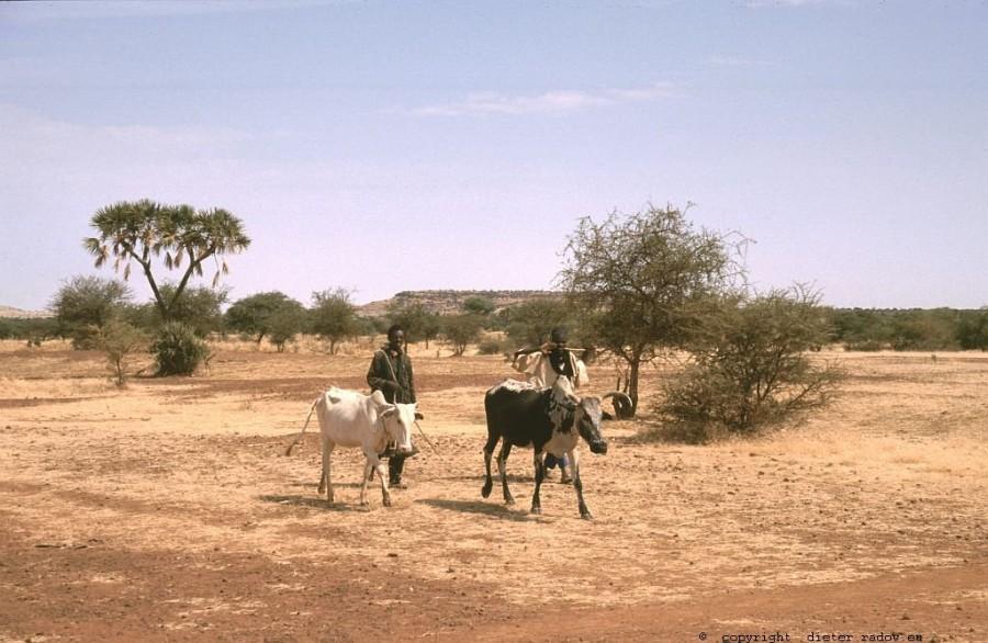 143 Burkina Faso Gorom Gorom74b