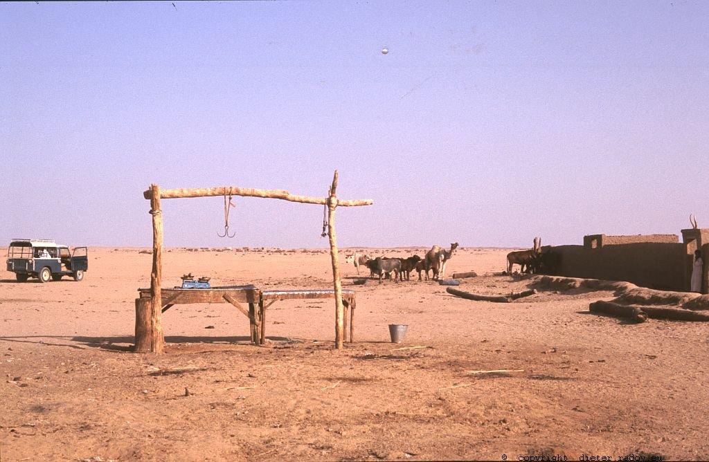 161 Burkina Faso Gorom Gorom26 Schlachtstelle vor Ort
