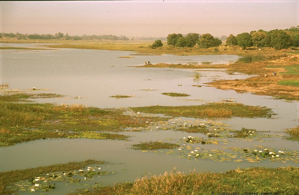 182 Burkina Faso Landschaft See40