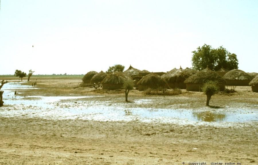 209 Kamerun - Logone-Birni-Überschwemmungs-Gebiet 4
