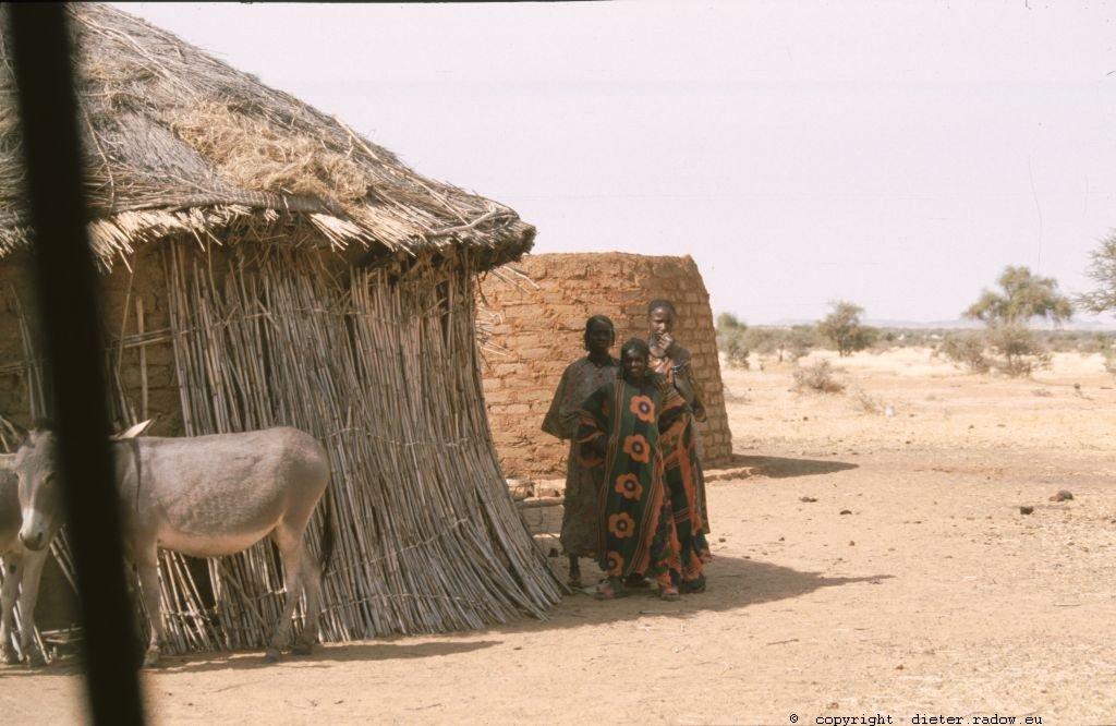 212 Burkina Faso Ziegen Gorom Gorom108