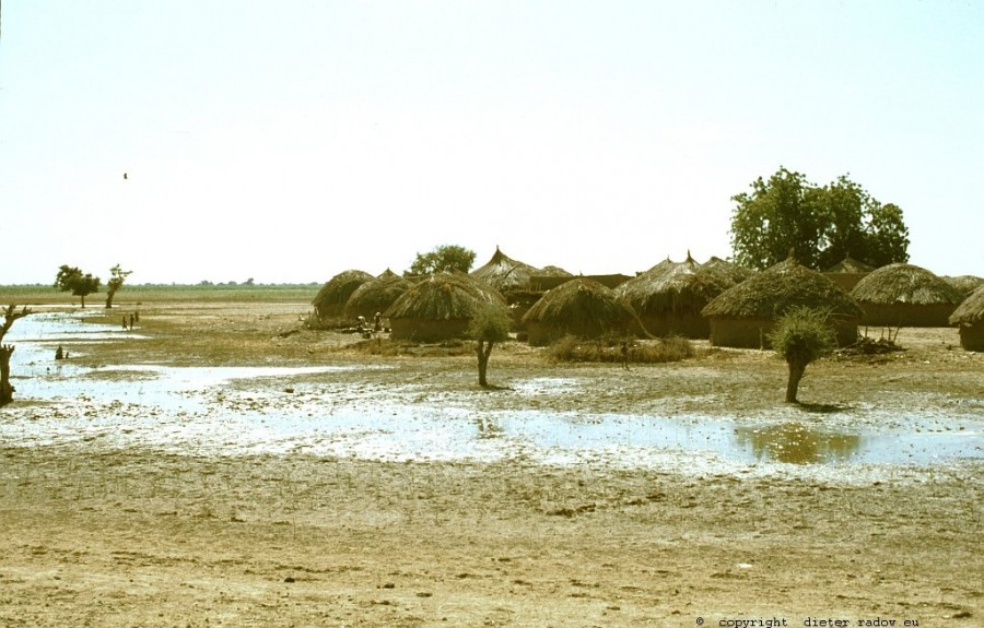 213Kamerun - Logone-Birni-Überschwemmungs-Gebiet 4