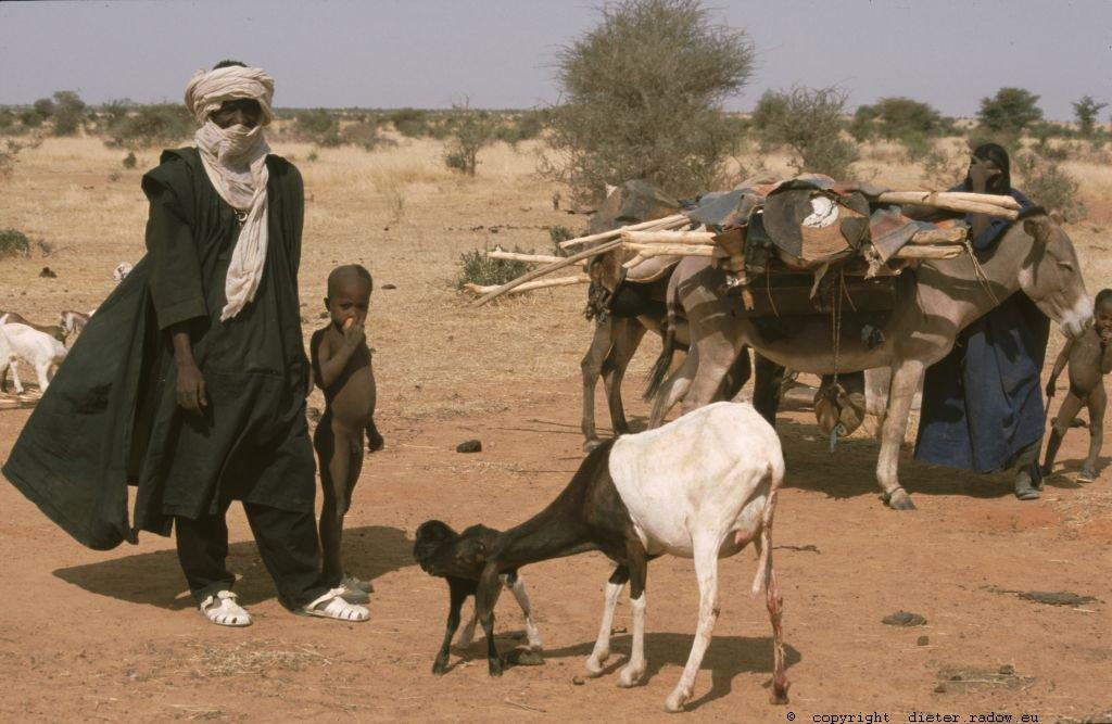 215 Burkina Faso Ziegen Gorom Gorom70