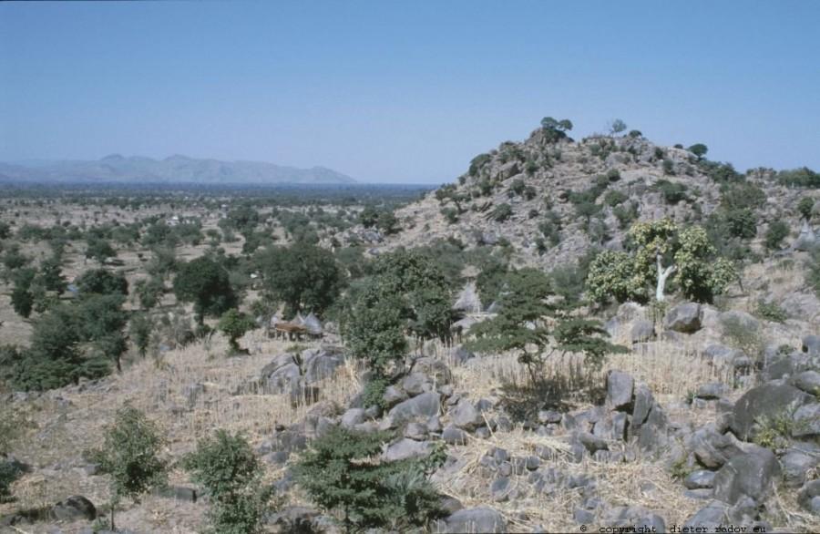 229 Kamerun Mandara-Gebiet071