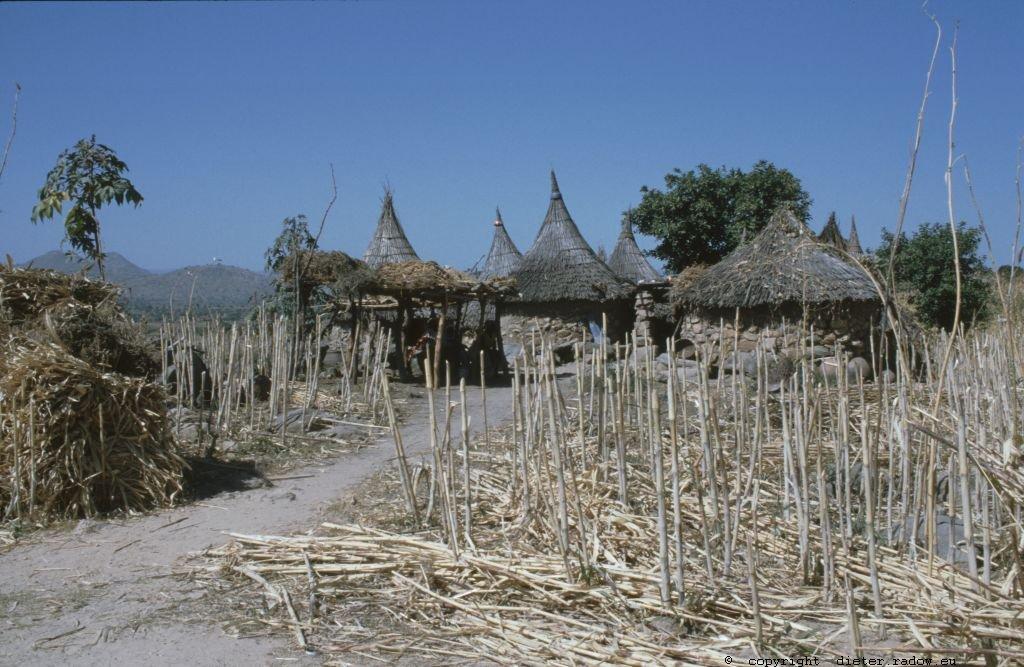 233 Kamerun Mandara-Gebiet074