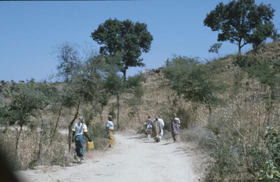 237 Kamerun Mandara-Gebiet082