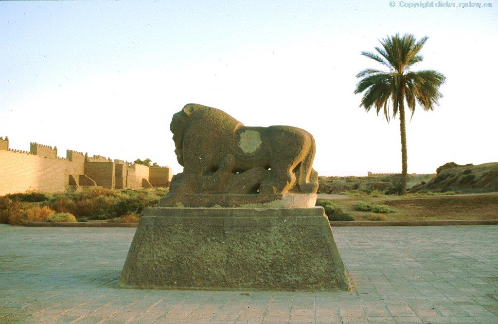 2464 Babylonischer Löwe