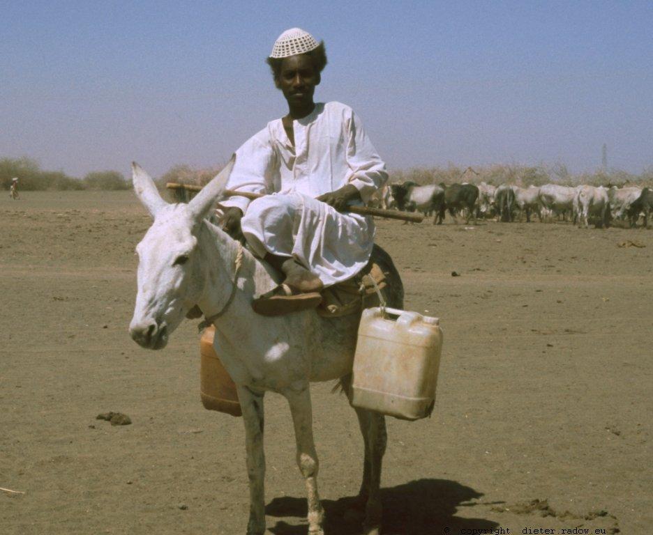 305Sudan Wad Medani 6