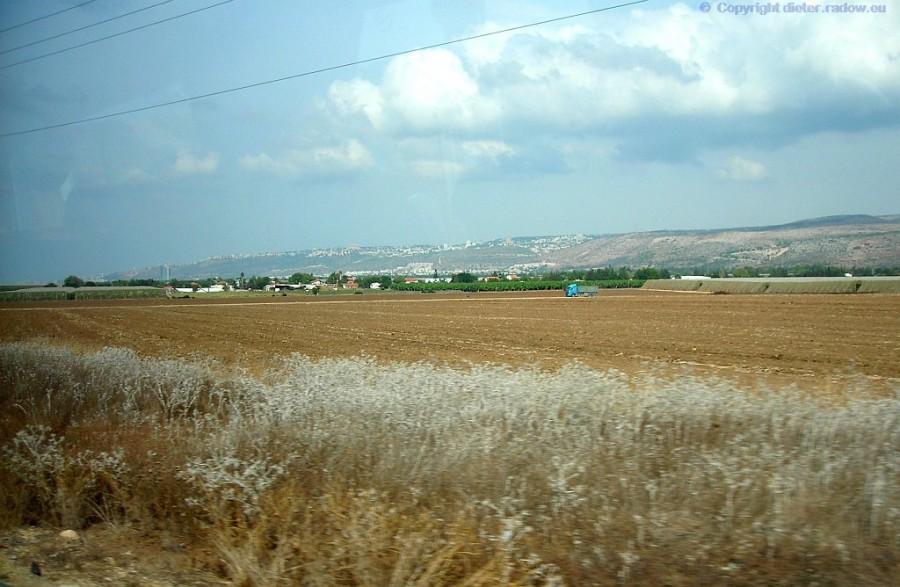64 Galilea fruchtbare Ebenen