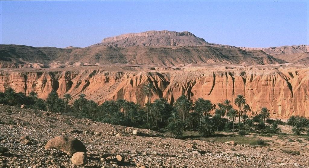 Algerien 56 Canjon de l`Aures1