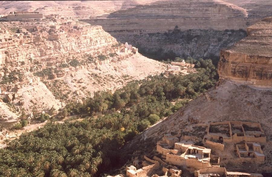 Algerien 56 Canjon de l`Aures3