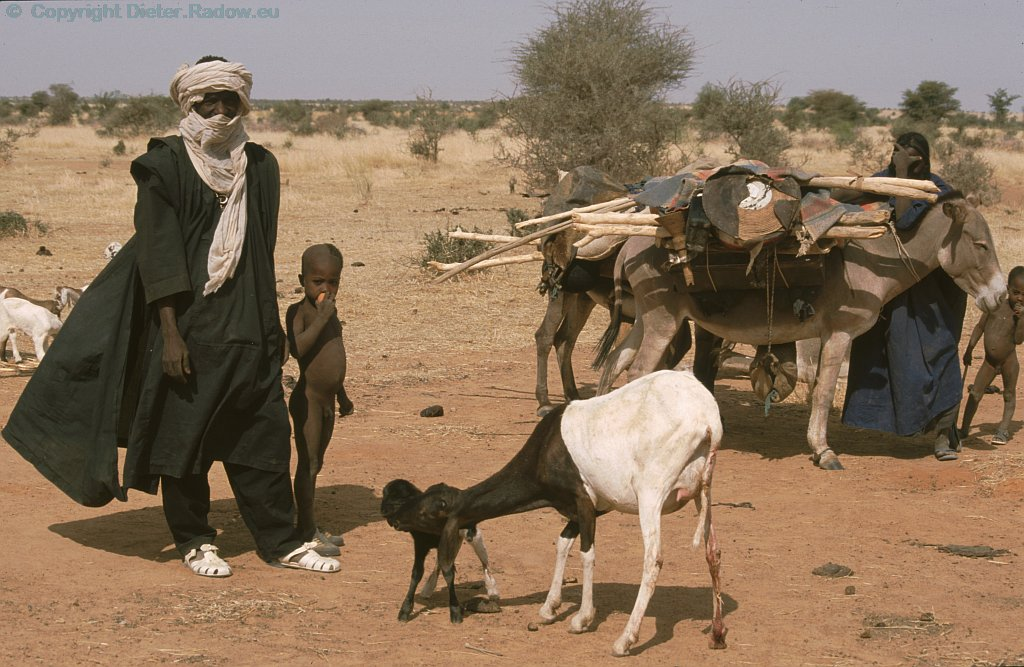 Nomads of Sahel 1996  -  family with donkey and goats