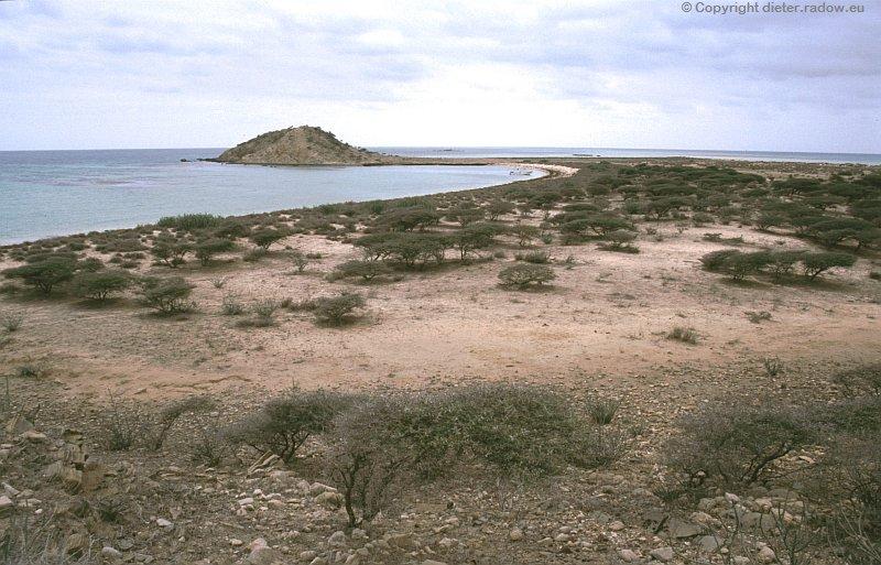 Eritrea Wüstenformationen auf einer Dahlak-Insel im Roten Meerl