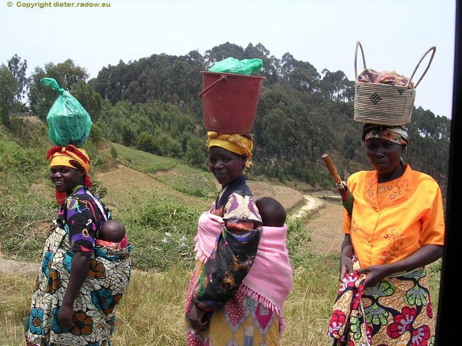Feldanbau Ruanda 7