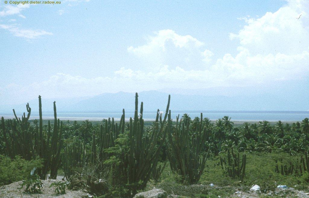 Haiti 2002048