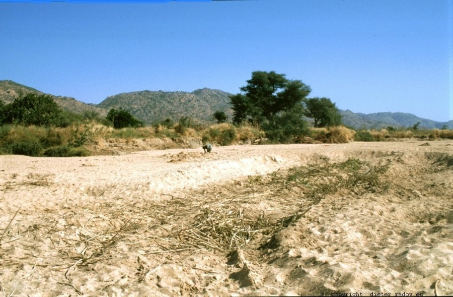 Kamerun Rumsiki Graben nach Wasser im Wadi-Grund