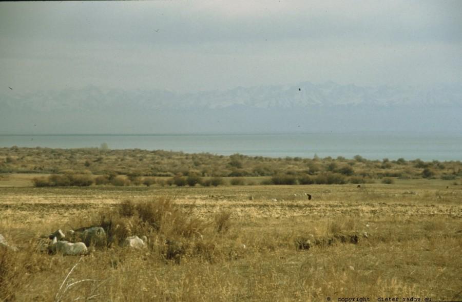 Kirgistan - Yssik-Kul 265