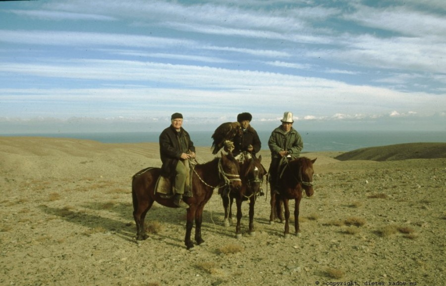 Kirgistan - Yssik-Kul 590 zentralasiatischer Steppenadler