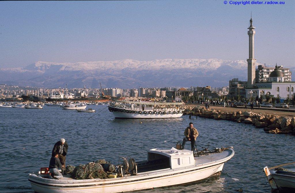 Libanon 1996 319 XXX
