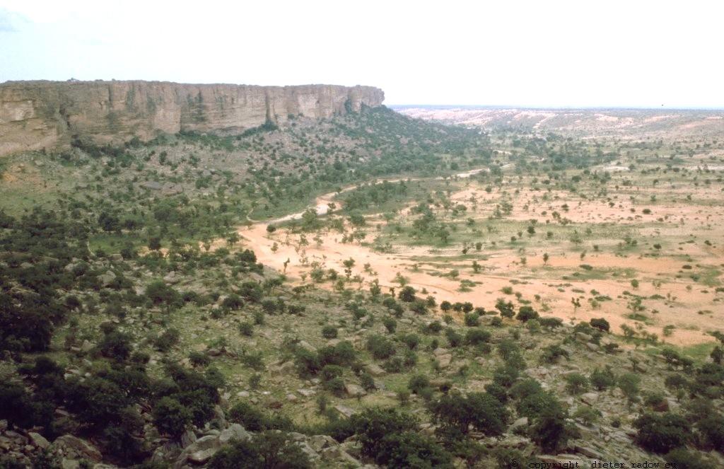 Mali 2000: Wadi vor der Faillaisse von Bandiagara