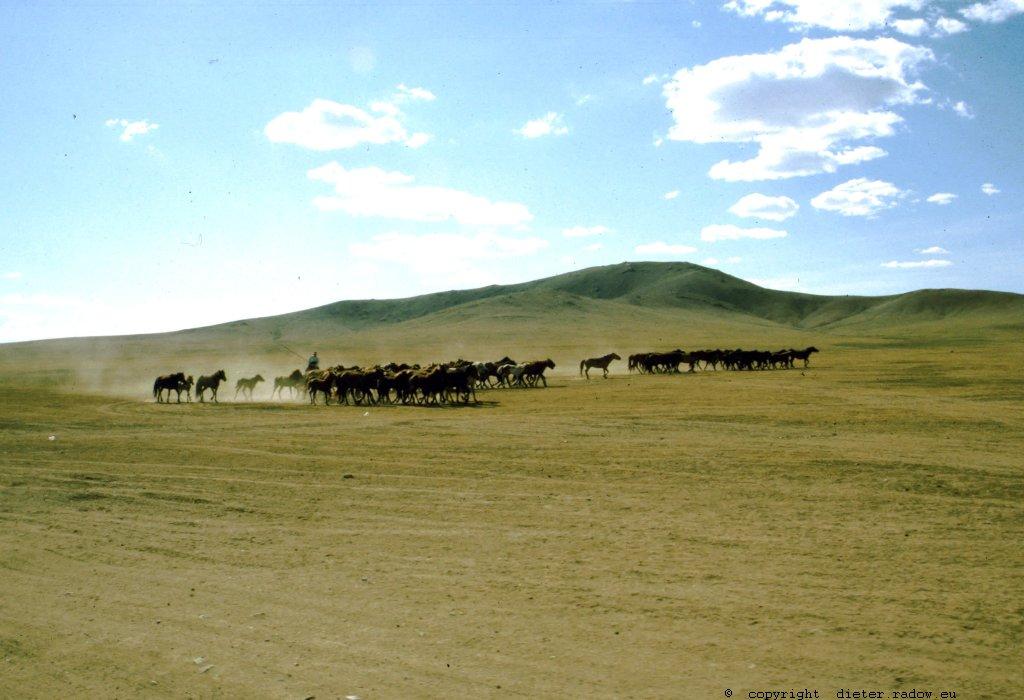 Mongolei 234