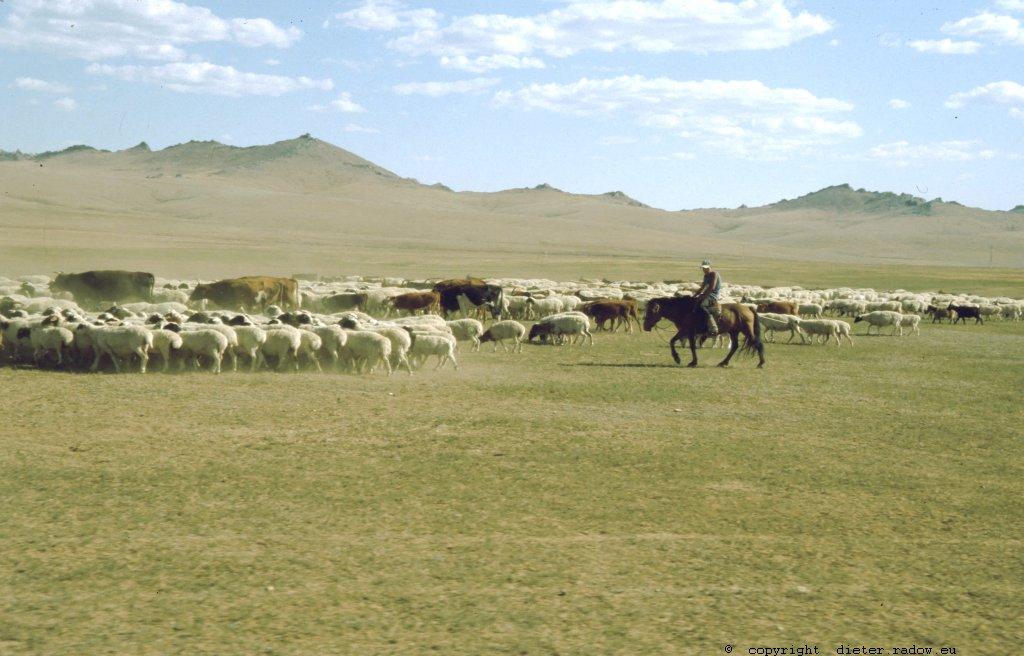 Mongolei 236