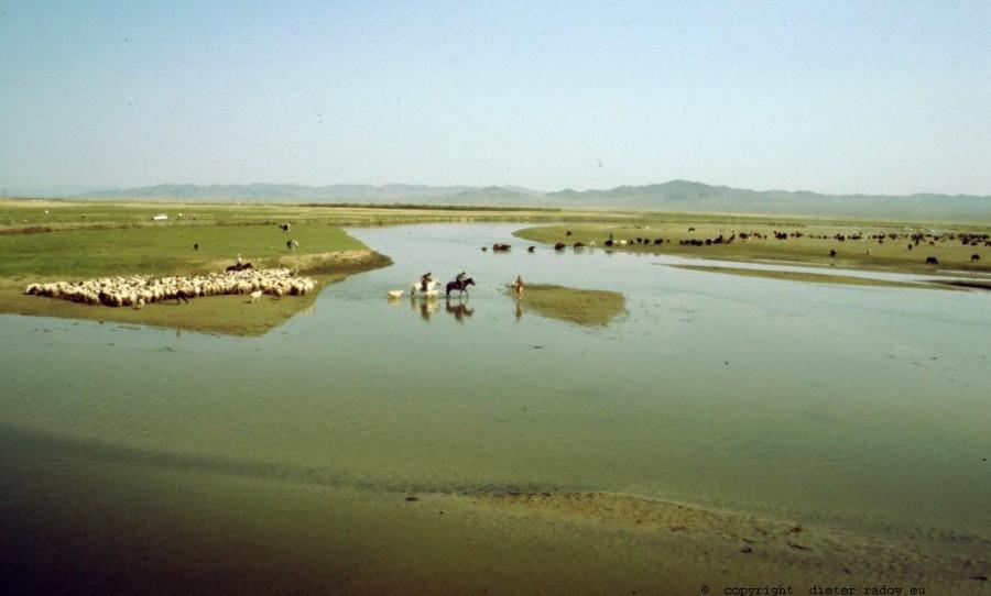Mongolei 242