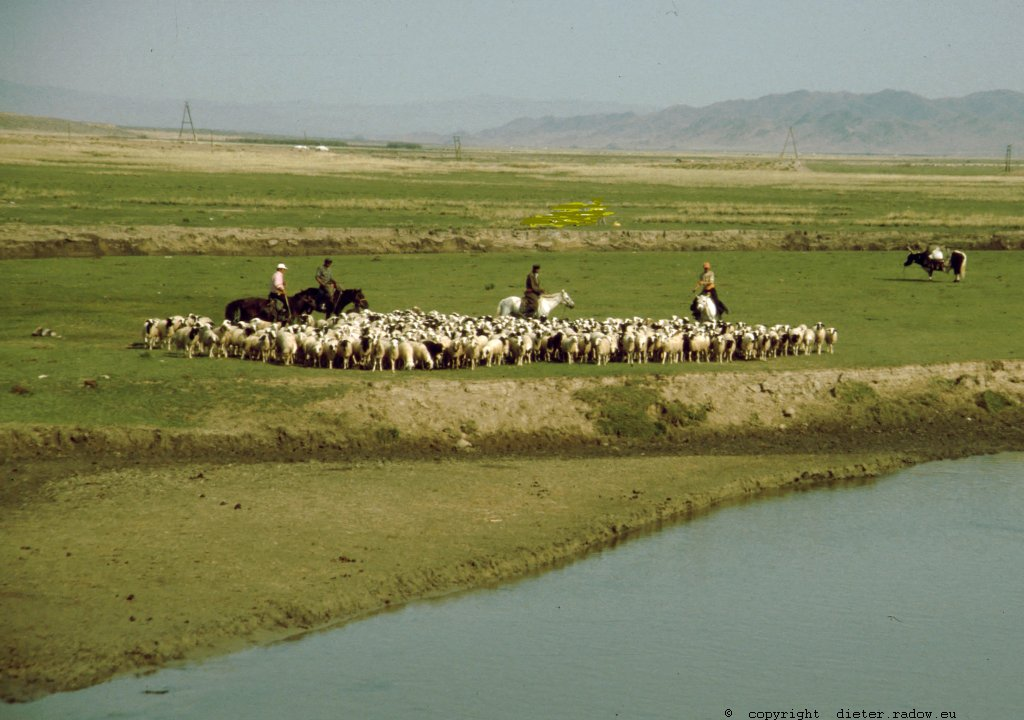 Mongolei 244