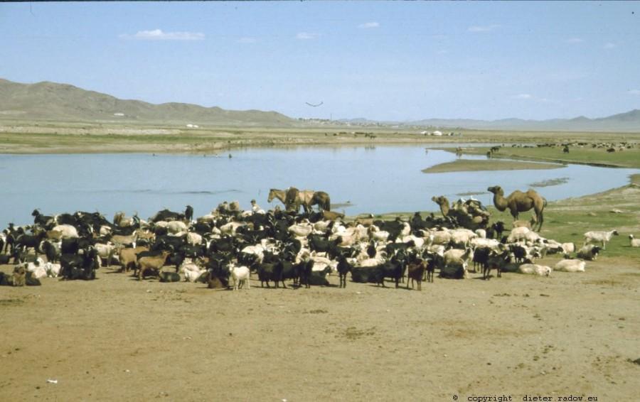 Mongolei 245