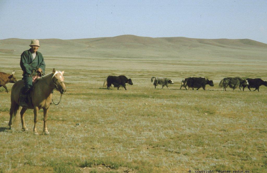Mongolei 263