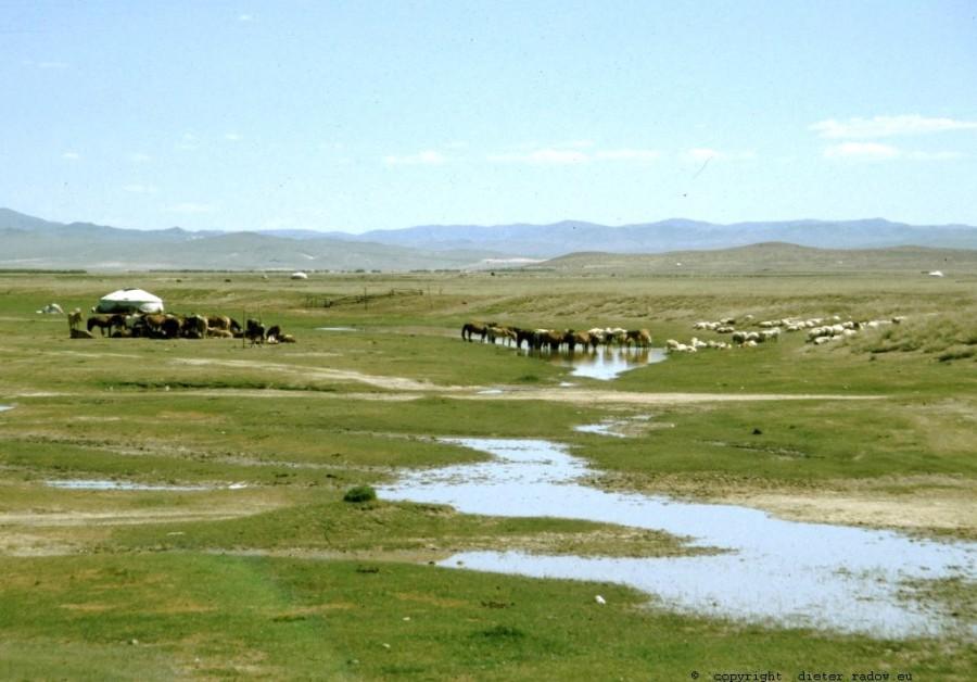 Mongolei 297