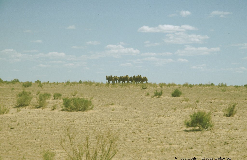 Mongolei 57
