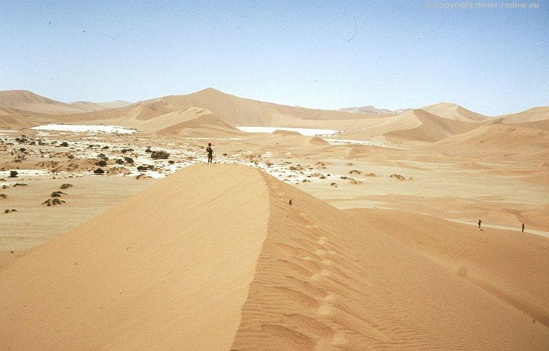 Namib-Wüste  die höchsten Wüsten-Sanddünen der Welt