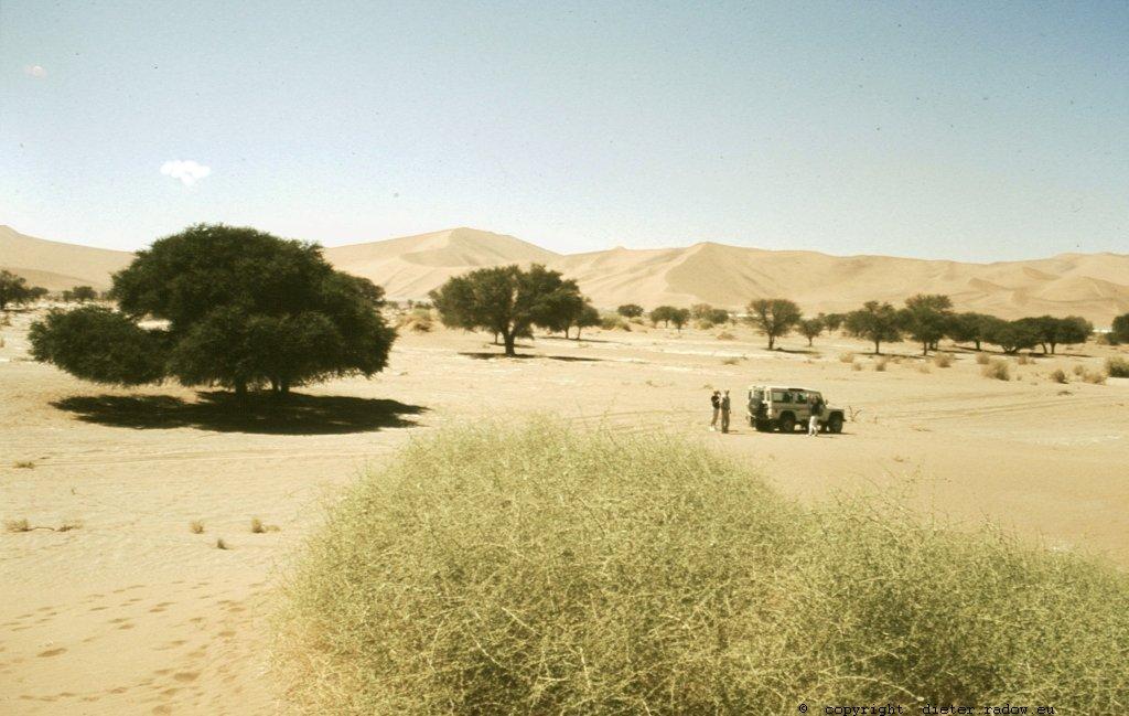Namibia Ende des Wadis Sussuflei.,
