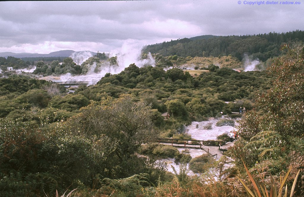 Neuseeland Geysir 8