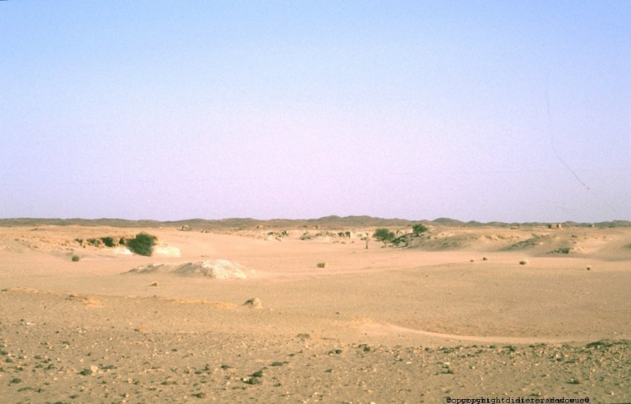 Sudan Wadi