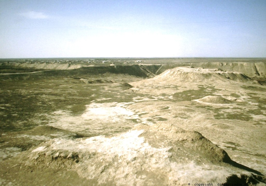 Turkmenistan - Khorasan Karakumwüste 47