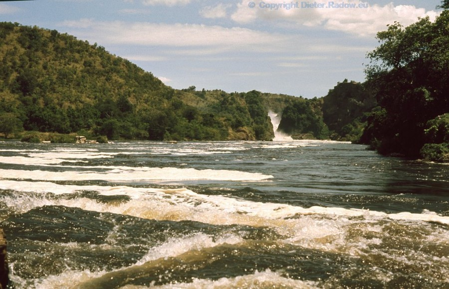 Uganda Murchison Fall von unten
