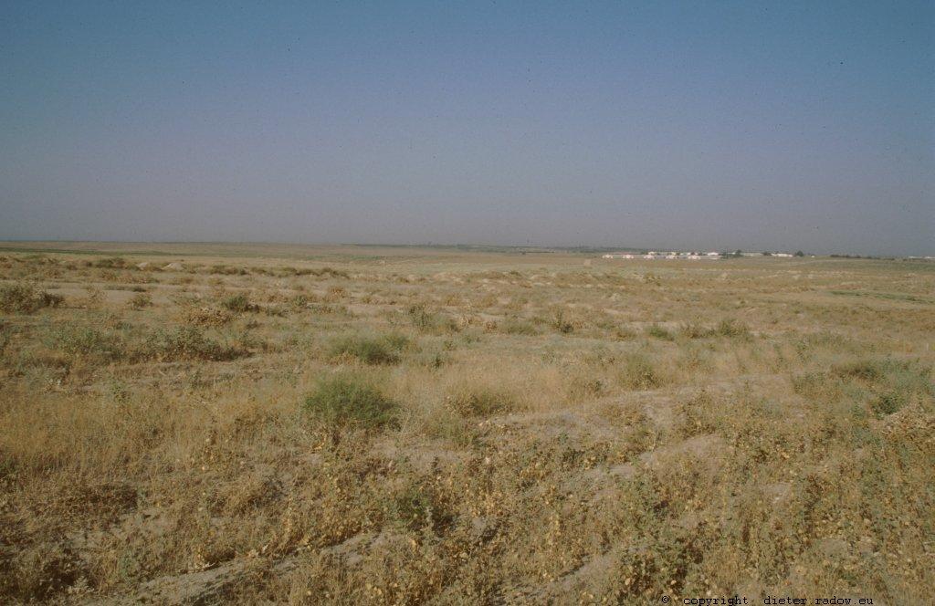 Usbekistan - Turan Wechselweidewirtschaft - Erdnüsse