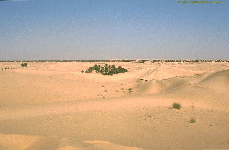 Algerien Wüste Sahara in village vicinity