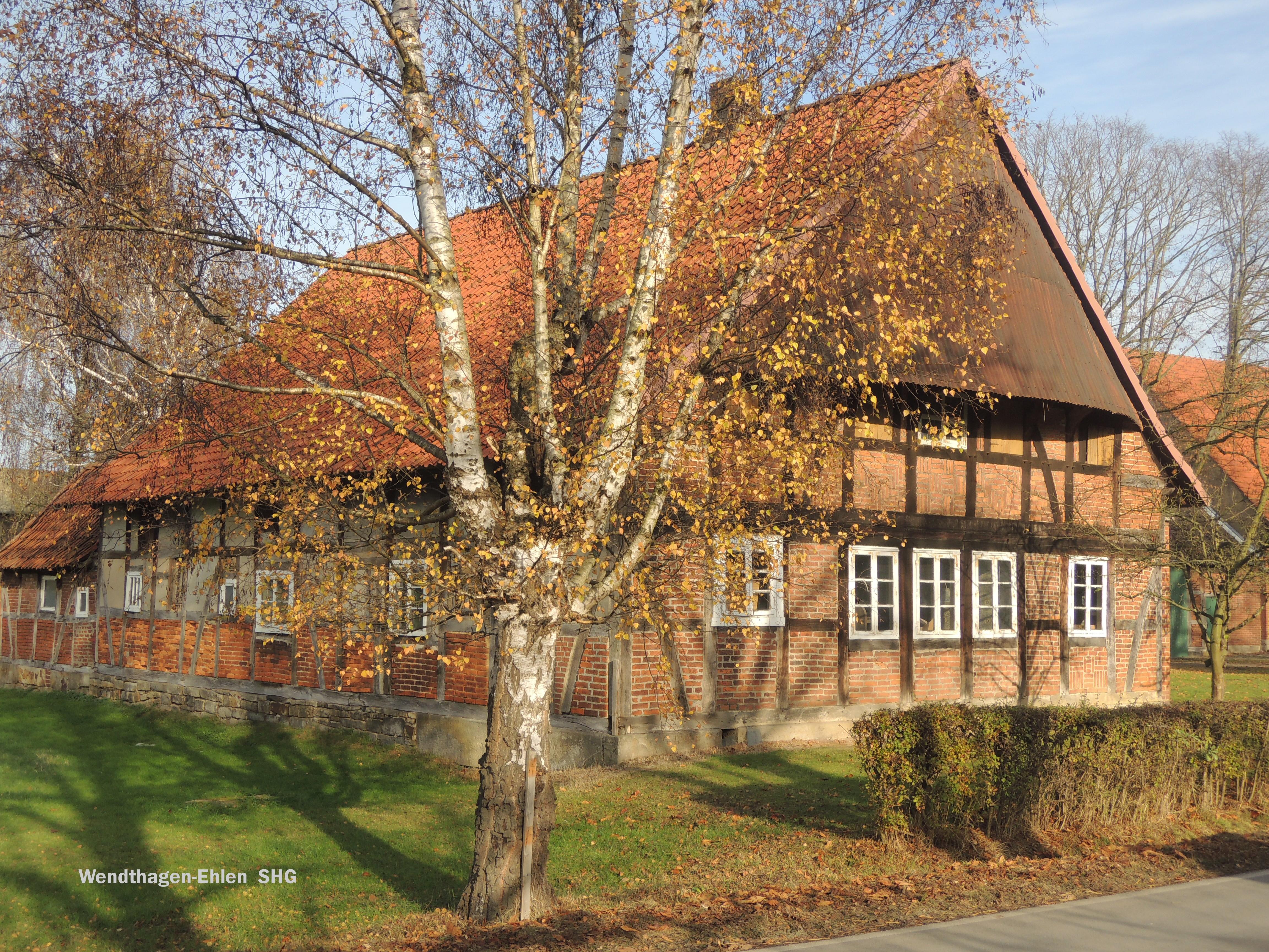 r-wendthagen--shg-